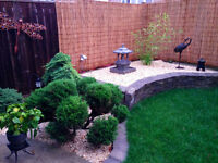 Grass Cutting Lawncare Maintenance and Handyman Services