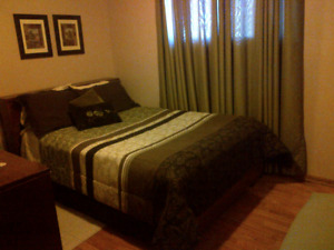 Available Dec. 15th - Furnished bedroom for rent
