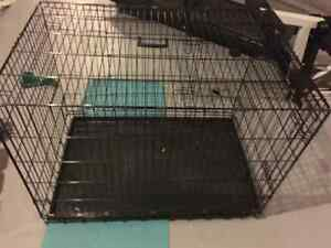 Large dog crate- in excellent condition