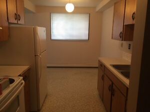 LARGE 2 BEDROOM APARTMENT - DOWNTOWN / CENTRAL - JUNE 1