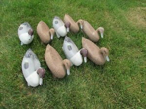 Duck Decoys (35)