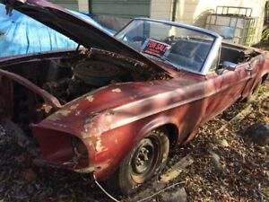 1967 convertible mustang project