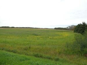 RM of Orkney 10 acre parcel with utilities 3 miles from Yorkton Regina Regina Area image 8
