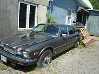 1986 Jaguar XJ12 Other