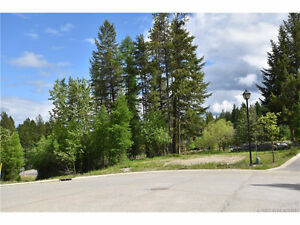 Large building lot located on Trickle Ridge Place