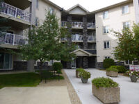 PENTHOUSE CONDO FOR SALE, 60 LAWFORD AVE. #411 RED DEER