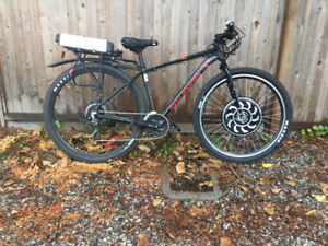 1000W Ebike for sale with 48V10AH LiFePO4 battery