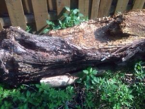 Free wood Chainsaw required