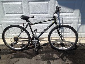 "18"" Nishiki Colrado bike"