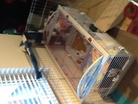 Rabbit Guinean pig cage