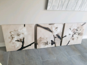EUC Ikea Canvas Pictures - Set of 3