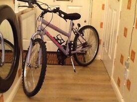 Pink older girls bicycle 23 inch wheel