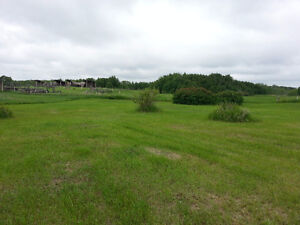 Lot bordered by Wildlife Reserve at Pelican Point, Buffalo Lake