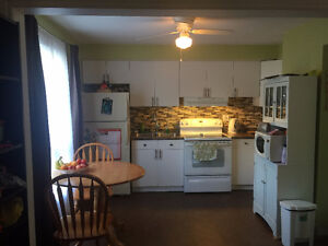 Very Peaceful Residential 2 free parking spot,5min to DOWNTOWN London Ontario image 1