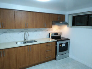 Large two bedroom apartment with separate entry for rent
