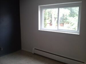 Large bedroom in shared apt.  Waterloo Kitchener / Waterloo Kitchener Area image 1