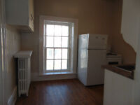 DOWNTOWN 1 BEDROOM APARTMENT