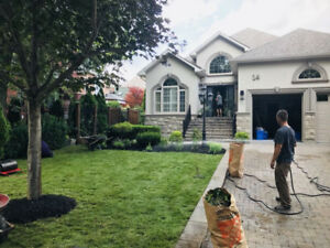 Large Property Sod Installation- 100% Certified Kentucky Blue