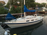 Tanzer 22 Just restored and launched