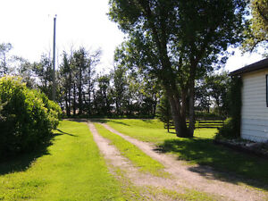 Cutest country charm on 5 acres Strathcona County Edmonton Area image 10