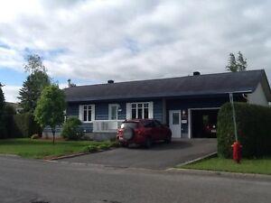 Maison à vendre - Thetford Mines, secteur Black Lake