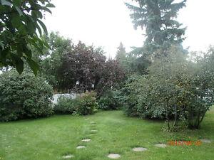 Home for Sale in VIking Edmonton Edmonton Area image 3