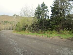 1.5 Acres For Sale in Grove Hill