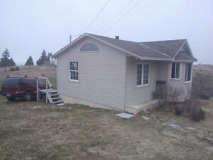 Great starter home Cambridge Kitchener Area image 4