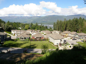 View lot in Salmon Arm