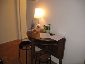 $1150 1 month bachelor downtown 24nd floor ALL INCLUSIVE - June