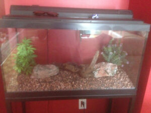 40+ gallon Aquarium for sale.  MOVING SALE!