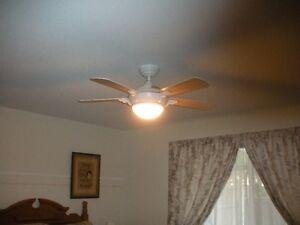"""44"""" ceiling fan"""