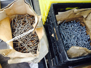 Coated and galvanized nails