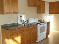 Kozy one bedroom apartment for rent for August