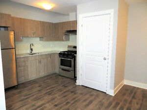 Newly Renovated Apartment in Sandy Hill - May to August Sublet