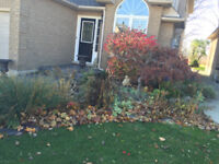 Fall Clean Up Services (Leaf and debris removal)
