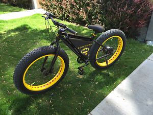 Two 350w Fat Tire eBikes for sale!