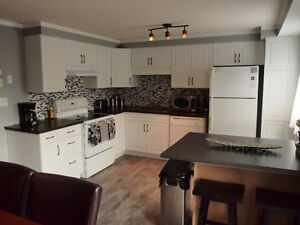 Upscale-Spacious-Clean Multilevel Town Home Avail. Nov 1 $1650