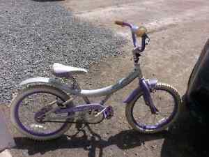 girls bicycle in great condition