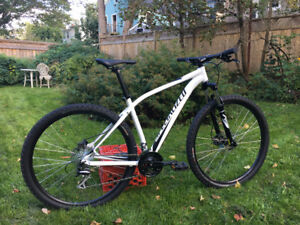 Brand New Specialized Rockhopper - Size L