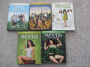 Seasons 1 Thru 5 of Weeds on DVD