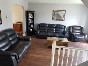 Living room set. Couch chair love seat need gone 300.00