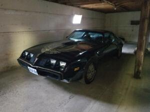 1981 Pontiac Trans Am ttop