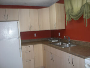 1 Bedroom suite plus den available (Lower College Heights)