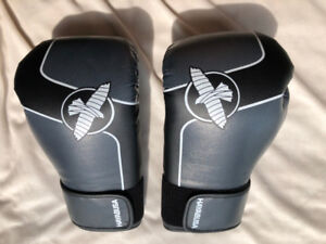Hayabusa Sports 12oz. Boxing Gloves Exercise