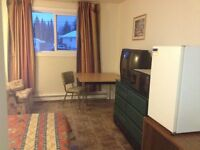 NEWLY RENOVATED ROOM-FULLY FURNISHED-AVAILABLE NOW-GARSON