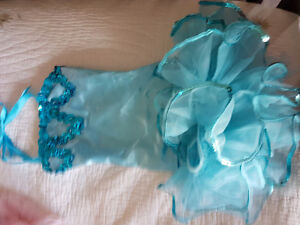Adorable ballet tutus for 3 or 4 yr (dance size 4-6) and shoes