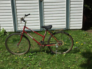 Adult/youth Bicycle