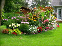 Part-time Gardening Work