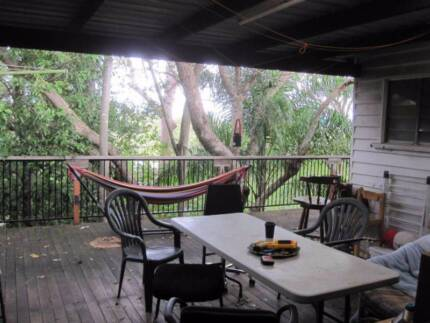 Room available in Taringa treehouse Taringa Brisbane South West Preview